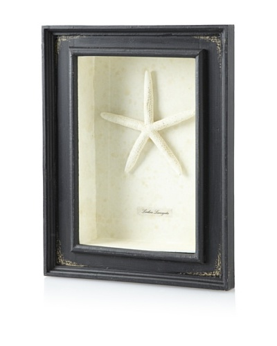 Diamond Reef Starfish Shadow Box [Black]