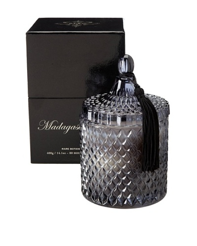 D.L. & Co. Madagascar Spice Candle in Gift Box