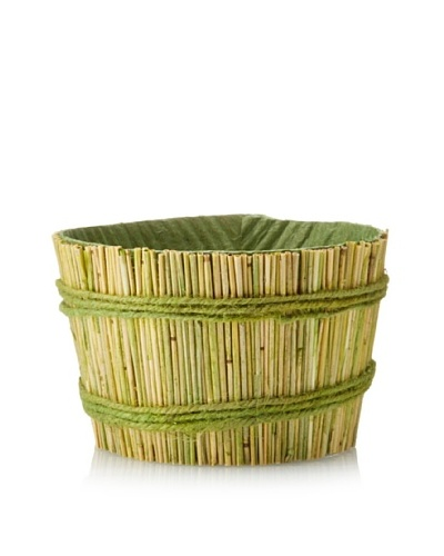 Straw Container, Green/Yellow