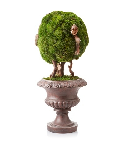 Forever Green Art Moss Ball Bonsai
