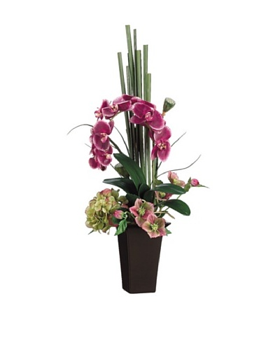 Phalaenopsis/Hydrangea Plant, Violet/Orchid