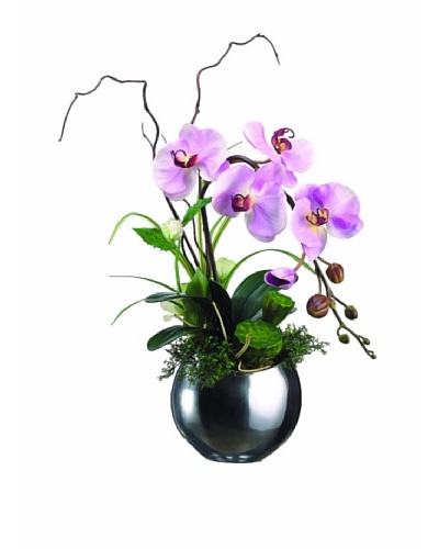 Orchid and Lotus Pod In Aluminum Vase