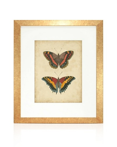 Antique Butterfly Pair IV