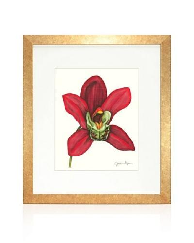Majestic Orchid III