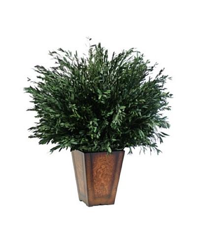 Forever Green Art Handmade Table Top Green Willow Eucalyptus Tree