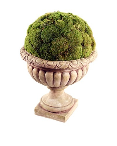 Forever Green Art Handmade Moss Display in Villa Urn