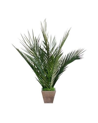Forever Green Art Handmade Key Largo Palm Tree