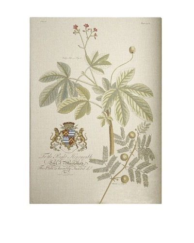 French Linen Collection Vintage Flora Tapestry