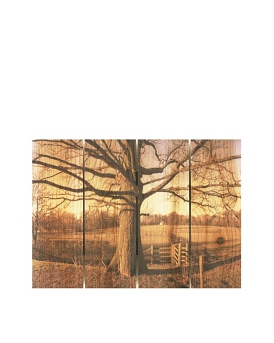Big Oak, 22.5 x 16