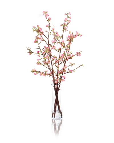 New Growth Designs Faux Quince Stems in Vase, Pink