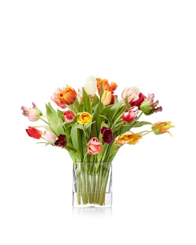 New Growth Designs Spring Blooming Tulips