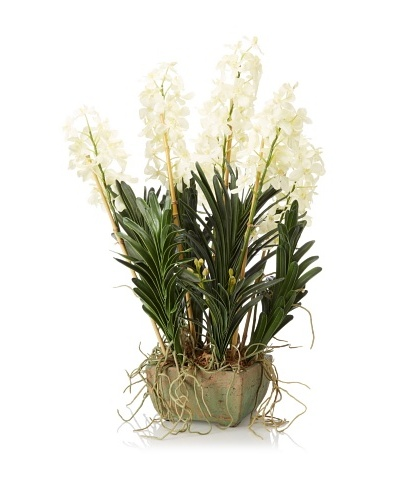 New Growth Designs Vanda Orchid with Natural Bamboo Stakes