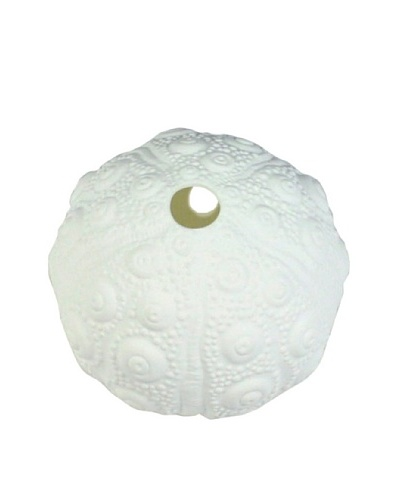 HomArt Urchin Bone China Wall Vase