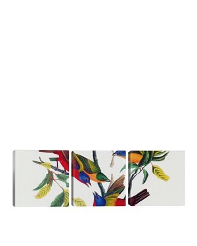 iCanvasArt John James Audubon: Painted Bunting Panoramic Giclée Triptych