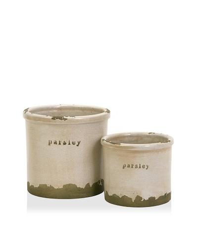 Set of 2 Parsley Sage Pots
