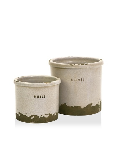 Set of 2 Basil Herb Pots