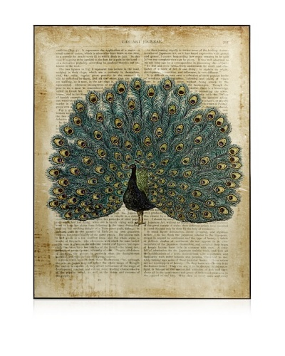 Peacock In Print Wall Decor