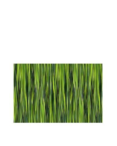 Jordan Carlyle Green Grasss on Canvas
