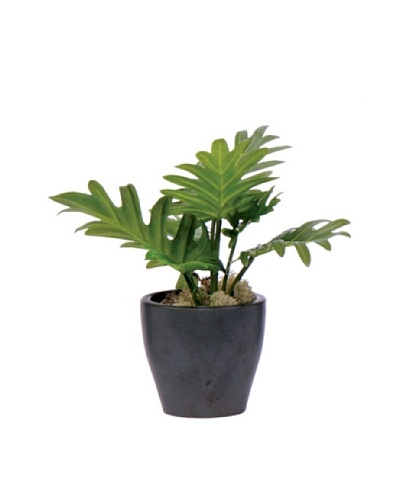 Lux-Art Silks Split Leaf in Black Pot, Green