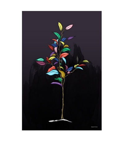 Maxwell Dickson Trees Of Color