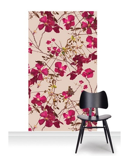 Michael Angove Clematis Claret Mural [Accent]