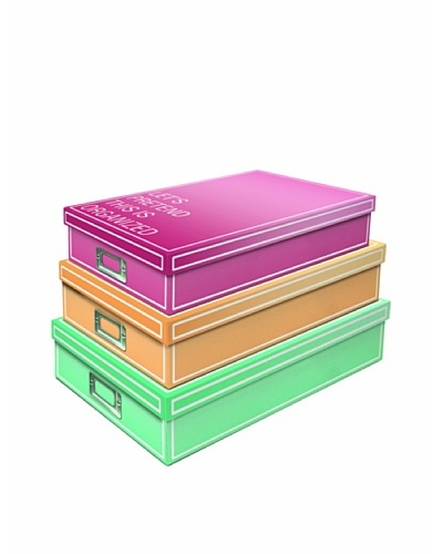 Molly & Rex Set of 3 Ombre Type Document Storage BoxesAs You See