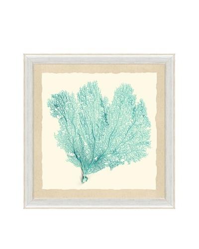 Pastel Sea Fan Framed Print III