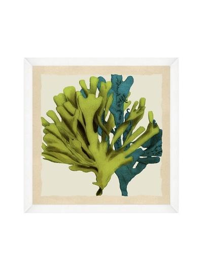 Green & Teal Seaweed Crop Framed Print I