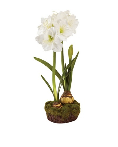 "Napa Home & Garden 29"" Double Amaryllis Drop-In, White"