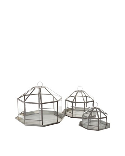 Napa Home & Garden Set of 3 Garden District Francis Terrariums