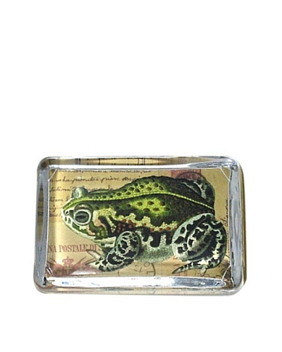 Victoria Fischetti Frog/Postcard Paperweight
