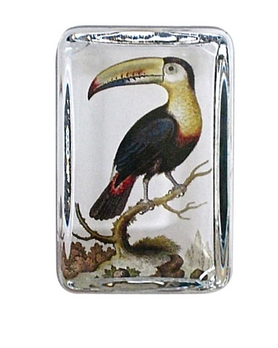 Victoria Fischetti Toucan Rectangle Paperweight