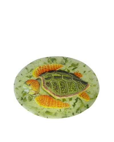 Victoria Fischetti Turtle on Green Handmade Decoupage