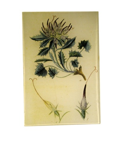 Twigs and Moss Blue Leaved Thistle Glass Tray