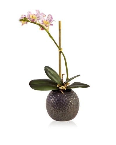 New Growth Designs Faux Small Potted Orchid