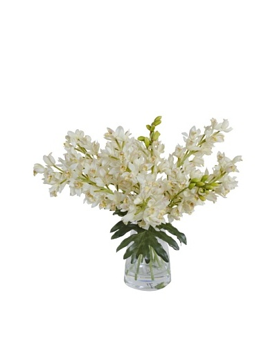 New Growth Designs Faux Cymbidium Orchids in Vase, White