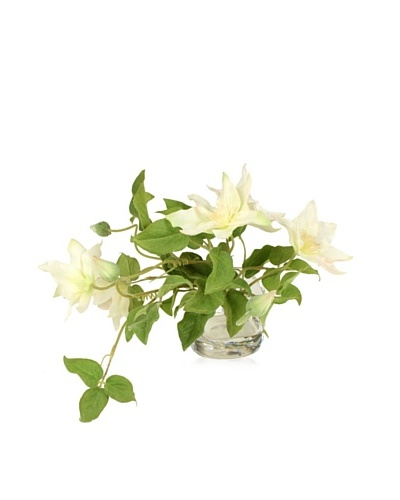 New Growth Designs White Clematis Vase