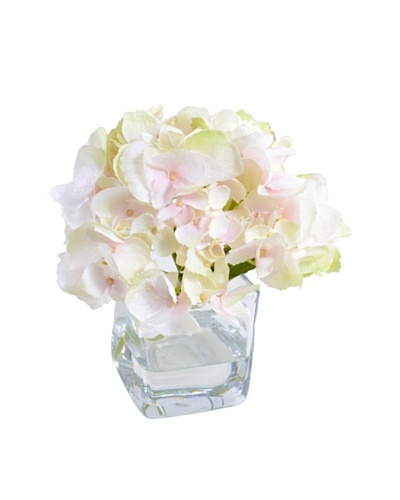 "New Growth Designs Hydrangea Cutting in 3"" Cube Vase"