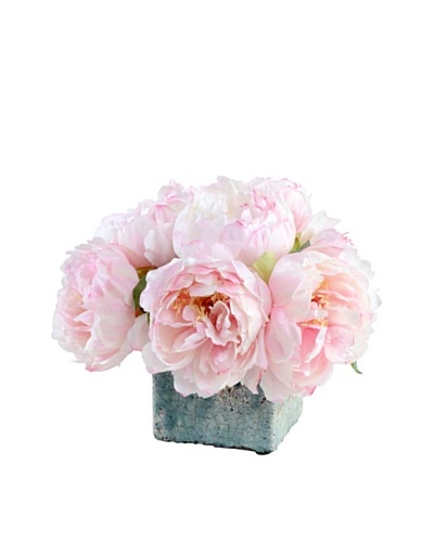 New Growth Designs Assorted Pink Peonies in Glazed Clay Cube Pot