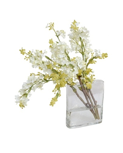 New Growth Designs White Lilac Arrangement