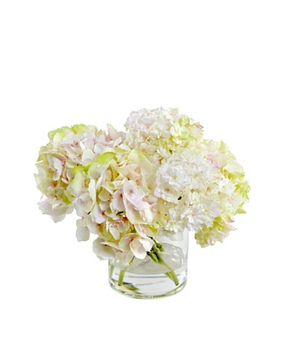 New Growth Designs Hydrangea Arrangement in 6 Cylinder Vase