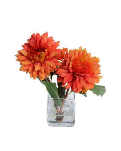 New Growth Designs Orange Dahlia Arrangement