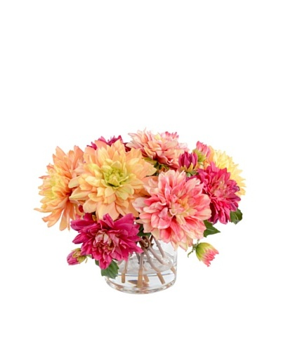 New Growth Designs Mixed Dahlia Arrangment in 6 Cylinder Vase