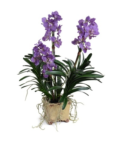 New Growth Designs Faux Vanda Orchid, Purple
