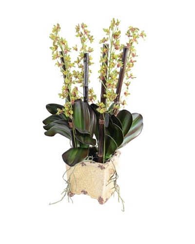 New Growth Designs Faux Cattleya Orchid