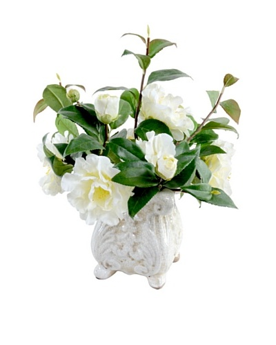 New Growth Designs Camellia Arrangement in French-Style Planter