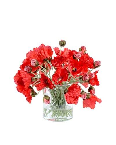 """New Growth Designs Wild Poppy Stems in 6"""" Cylinder Vase"""