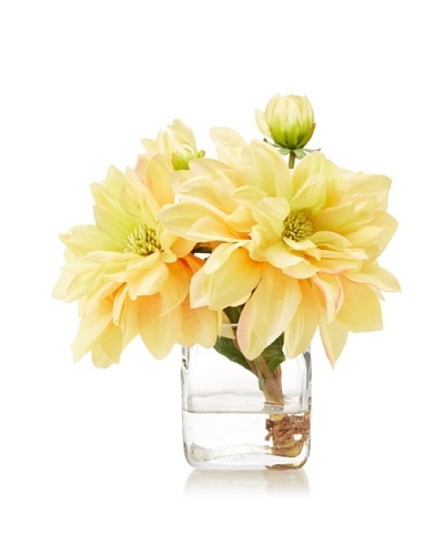 New Growth Designs Dahlia Cut Stems in Cube Vase with Faux Water, Yellow