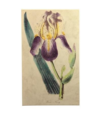New York Botanical Garden Serene Botanical Giclée on Canvas