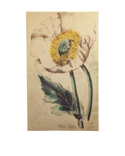"New York Botanical Garden ""Serene White Botanical"" Giclée on Canvas"